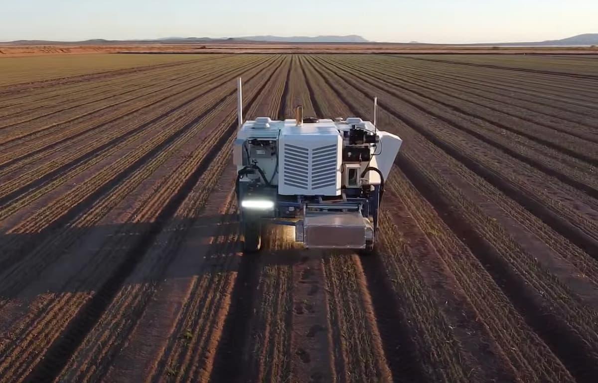 Smart Weeding With Robots